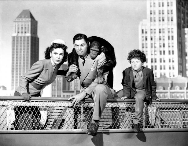Tarzan en Nova York (1942)